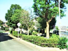 西谷町公園まで242m(徒歩4分)