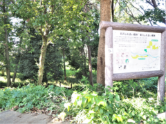宮沢ふれあい樹林(約90m)